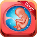 Pregnancy Baby Weekly Tracker