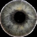 Diagnóstico ocular