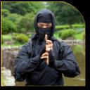Las técnicas de Ninjutsu