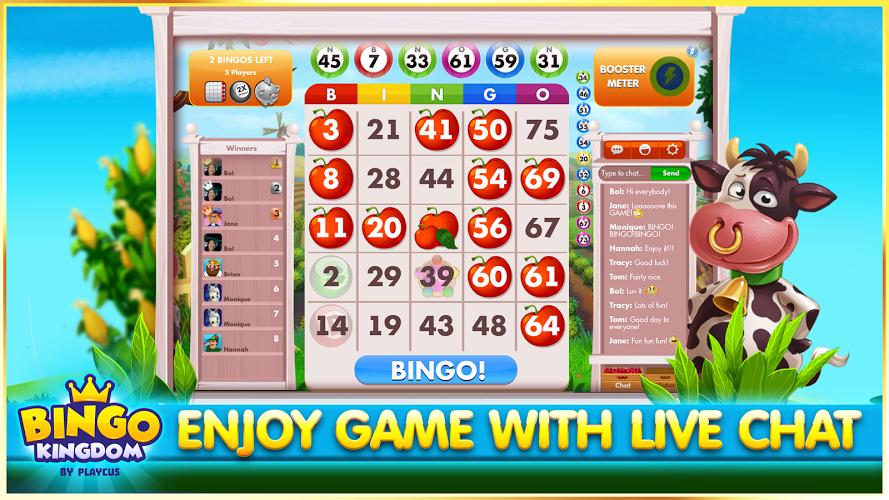 Bingo Kingdom™ 4