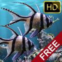 El acuario real – HD