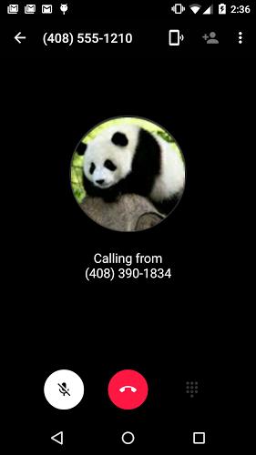 Marcador de Hangouts: llamadas 5