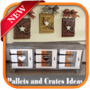 Pallets and Crates Ideas