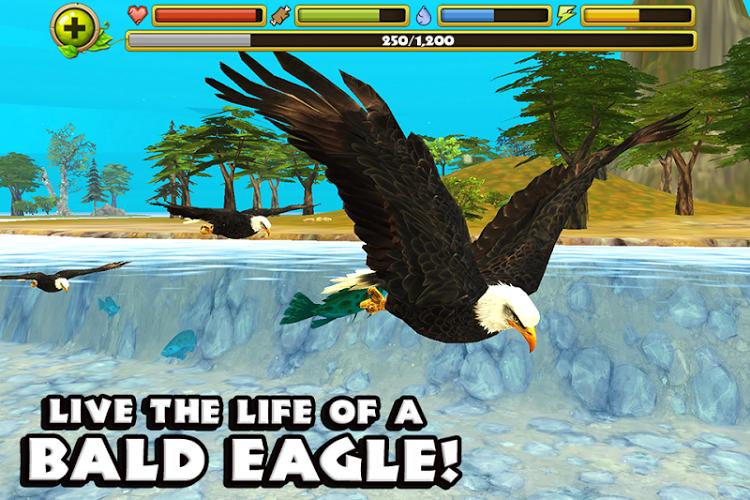 Eagle Simulator™ 1