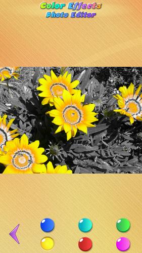 Efectos de Color en Fotos 3