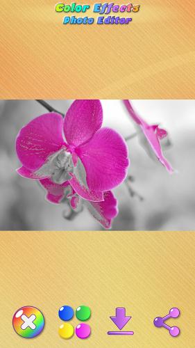 Efectos de Color en Fotos 4