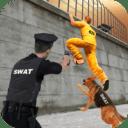 prision polic escap